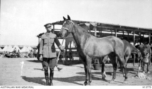 7thlighthorse